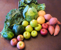 Collards, kale, cabbage, grapefruit, sweet potatoes, apples, green pepper.
